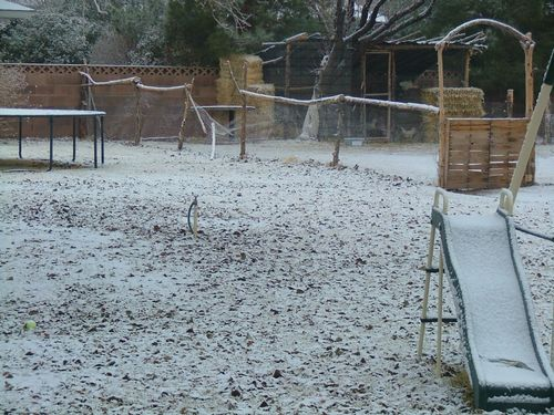 Dec 11-13 2009 021