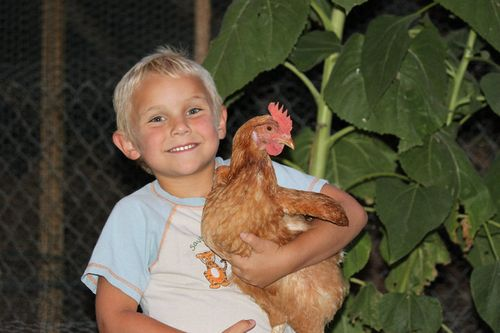 Jack and chicken